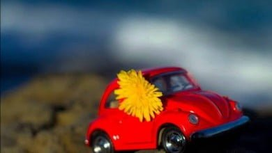Photo of Kırmızı Araba – İbrahim Sadri