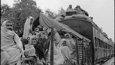 Photo of Müslümanlar, Hindular ve köpekler…